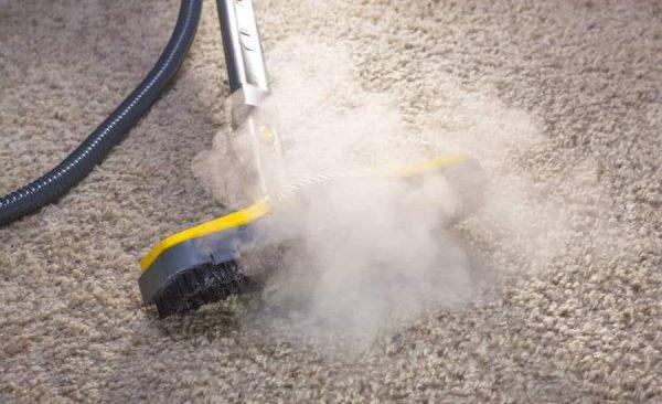 steam kill bed bugs
